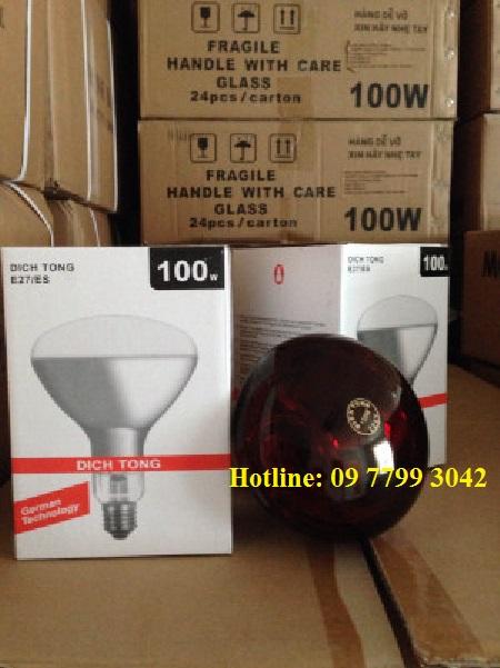 đèn úm 100w
