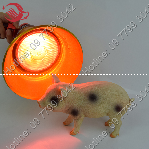 chao đèn hồng ngoại