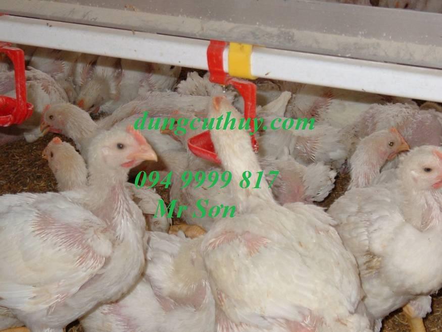 DỤNG CỤ THÚ Y LÊ ANH - Núm uống cho gà