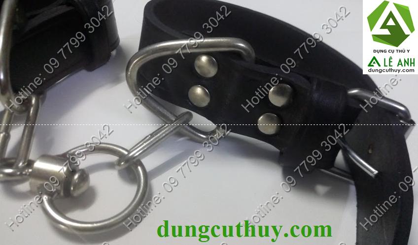 đai khóa chân bò